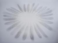 53_plumes-cercle---copie_v2.jpg
